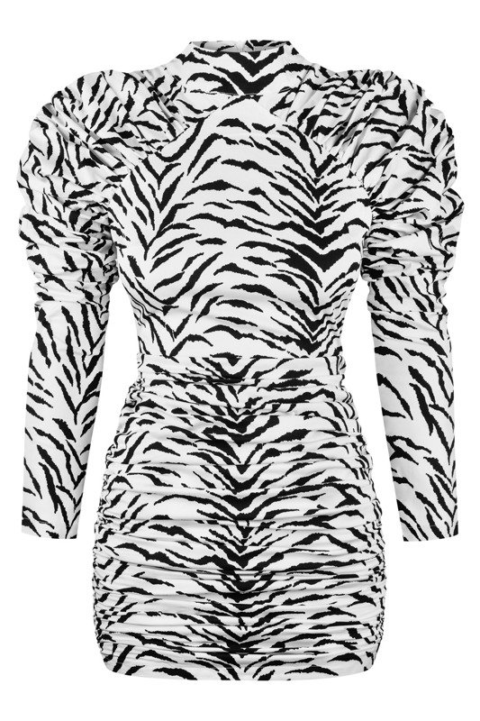 Jett Zebra Dress